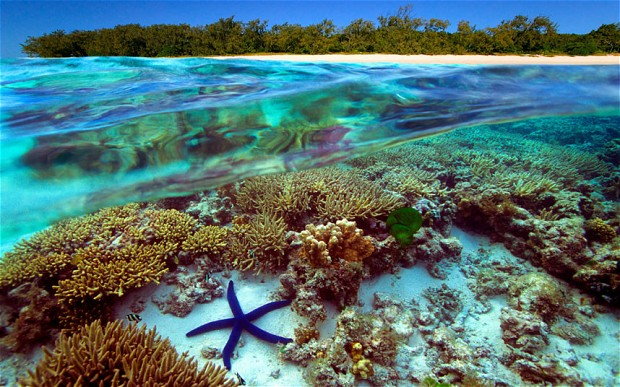 3. The Great Barrier Reef, Australia